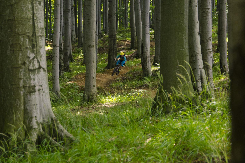 Rychlebskie Ścieżki to przykład tras przygotowanych z myślą o średniozaawansowanych i zaawansowanych rowerzystach