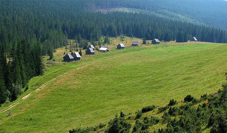 Polana pod Kopieńcem, fot: ŁukaszWu / Wikimedia Commons
